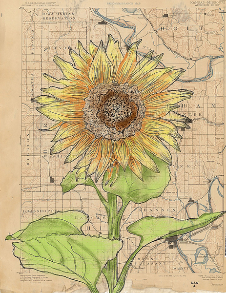 Sunflower & Map