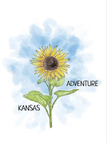 Kansas Graphic